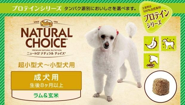 【ニュートロ シュプレモ(Supremo)】ナチュラルチョイス ラム&玄米 成犬用 超小型犬~小型犬用 6kg 【送料無料】