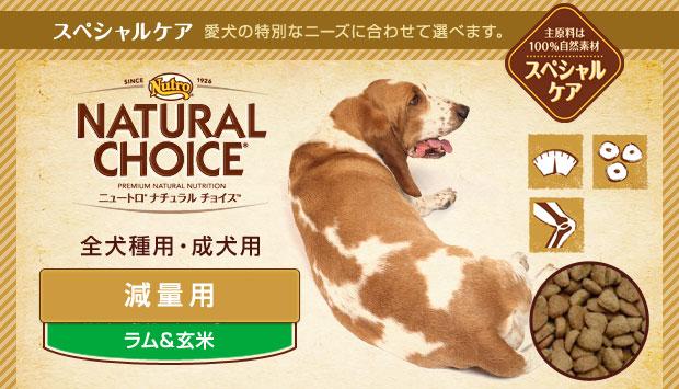 【ニュートロ シュプレモ(Supremo)】 ナチュラルチョイス 減量用 全犬種用 成犬用 ラム&玄米 4kg 【あす楽対応】