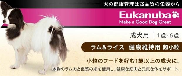 Eukanuba(ユーカヌバ)健康維持用ドッグフード 小粒のフードを好む1歳以上の成犬用【送料無料】