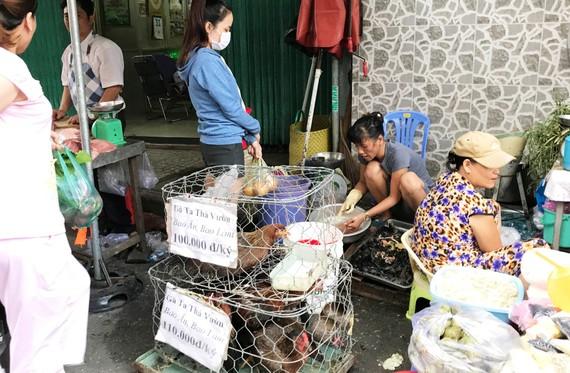 TPHCM đã cấm nhưng tình trạng buôn bán gia cầm sống không qua kiểm dịch, giết mổ gia cầm trái phép vẫn diễn ra khá phổ biến ở nhiều nơi trên địa bàn TPHCM.