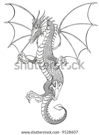 stock photo : Dragon Tattoo black and white