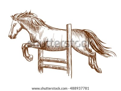 Horse Sketches   Download Free Vector Art  Stock Graphics   Images Wild horse runs and jumps over barrier  White stallion leaping over fence   Vector thin  Relax coloring page