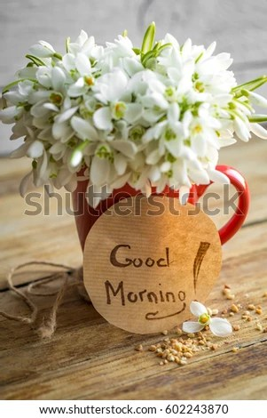 Free Good Morning With Bouquet Of Flowers Photos Page 2