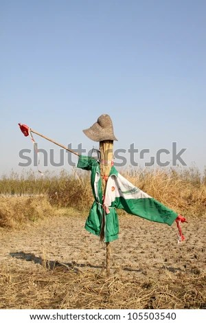 stock photo : scarecrow in the farmland in china