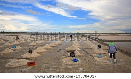 Workers shovel salt at salt pan in Samut Sakhon, Thailand - stock photo