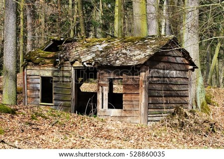 Image result for picture of dilapidated shack in woods