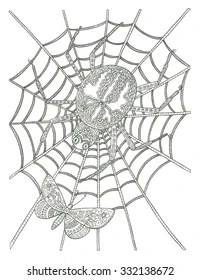 spider web coloring page # 77