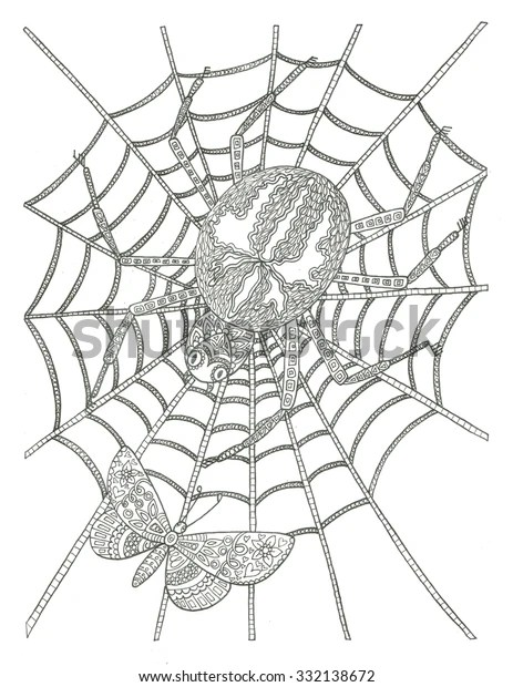 spider web coloring page # 16