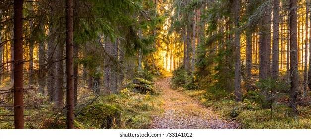 Nordic Images Stock Photos Amp Vectors Shutterstock