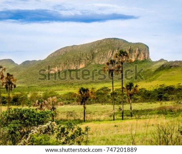 Beautiful View Of Morro Da Baleia In Chapada Dos Veadeiros Goias Brazil
