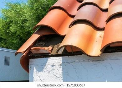 https www shutterstock com image photo broken clay roof tile exposed under 1571803687