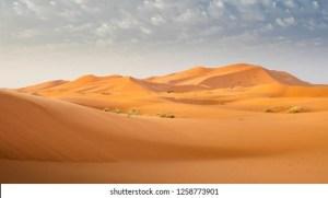 Desert Mirage Images, Stock Photos & Vectors | Shutterstock