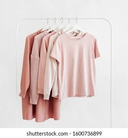 https www shutterstock com image photo feminine clothes pastel pink color on 1600736899