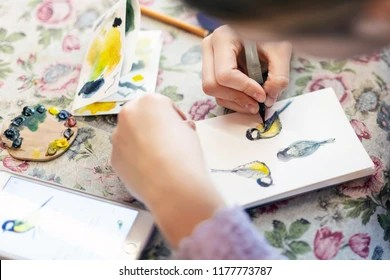 Kids Drawing Birds Stock Photos Images Photography Shutterstock