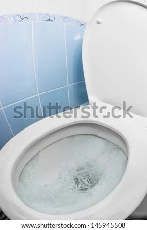 Water Flushing Toilet Bowl Sink WC Stock Photo (Edit Now) 145945508 - Shutterstock