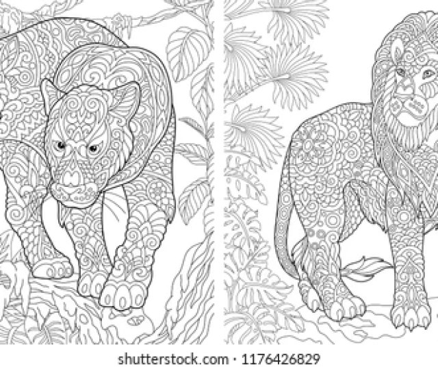 Royalty Free Adult Coloring Pages Stock Images Photos Vectors