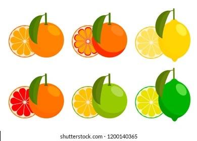 Blood Orange Stock Vectors Images Amp Vector Art Shutterstock