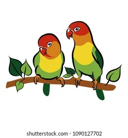 Parrots Lovebirds Isolated Birds On White Background Tropical Bird Vector Illustration
