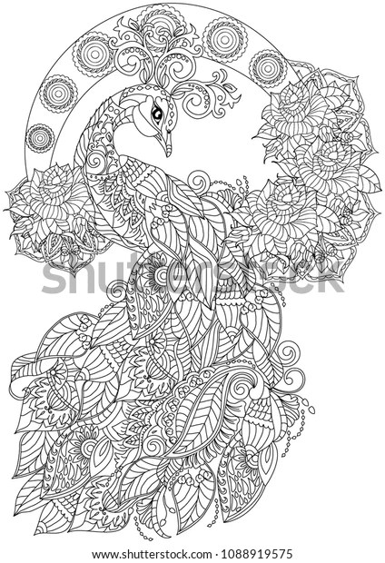 Peacock Coloring Book Page Adults Stock Vector Royalty Free 1088919575
