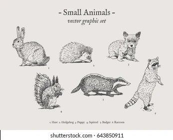 Animals Drawing Images Stock Photos Vectors Shutterstock
