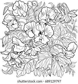 sweet pea coloring pages # 13