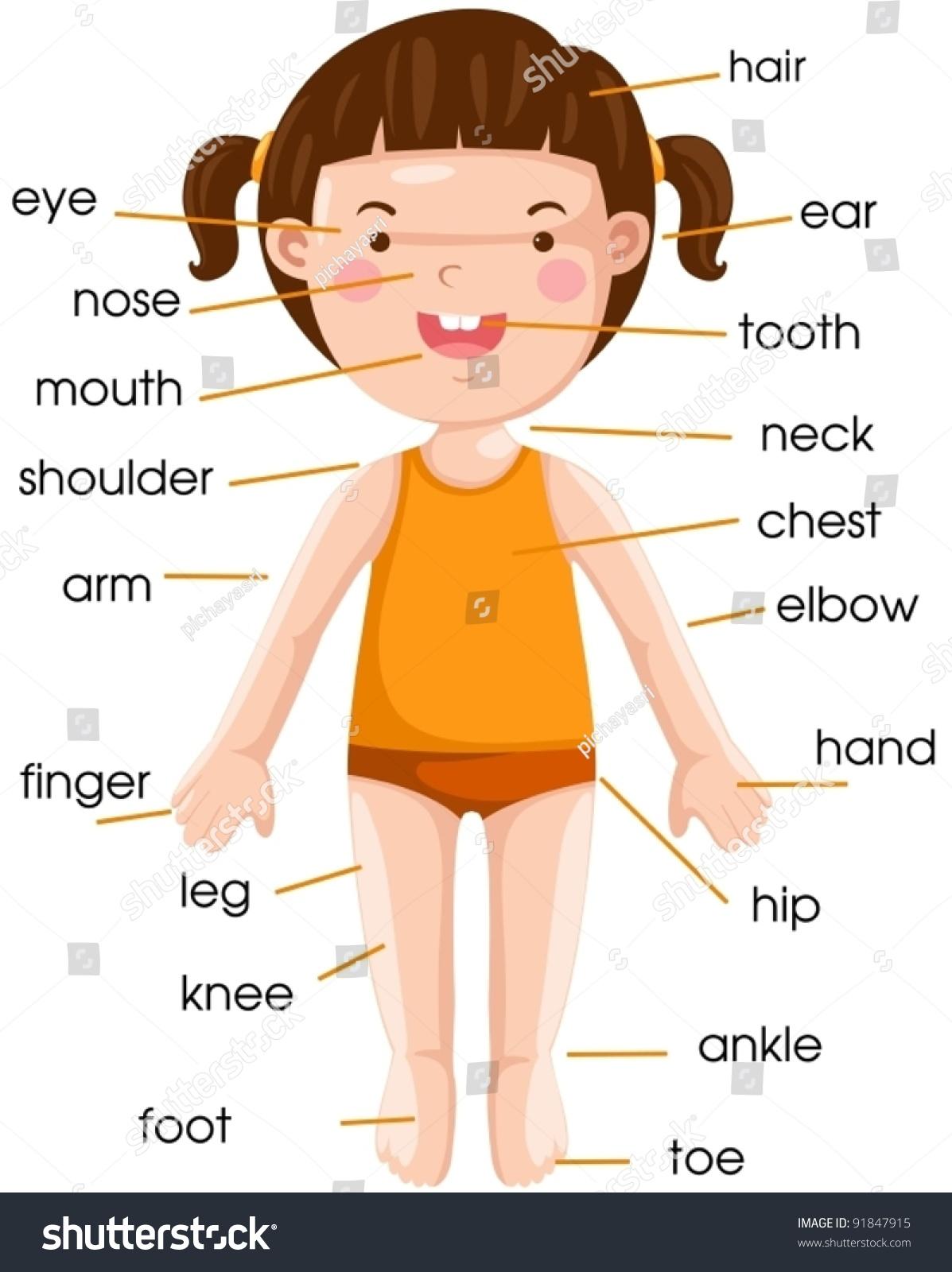 Illustration Of Isolated Vocabulary Stock Photo