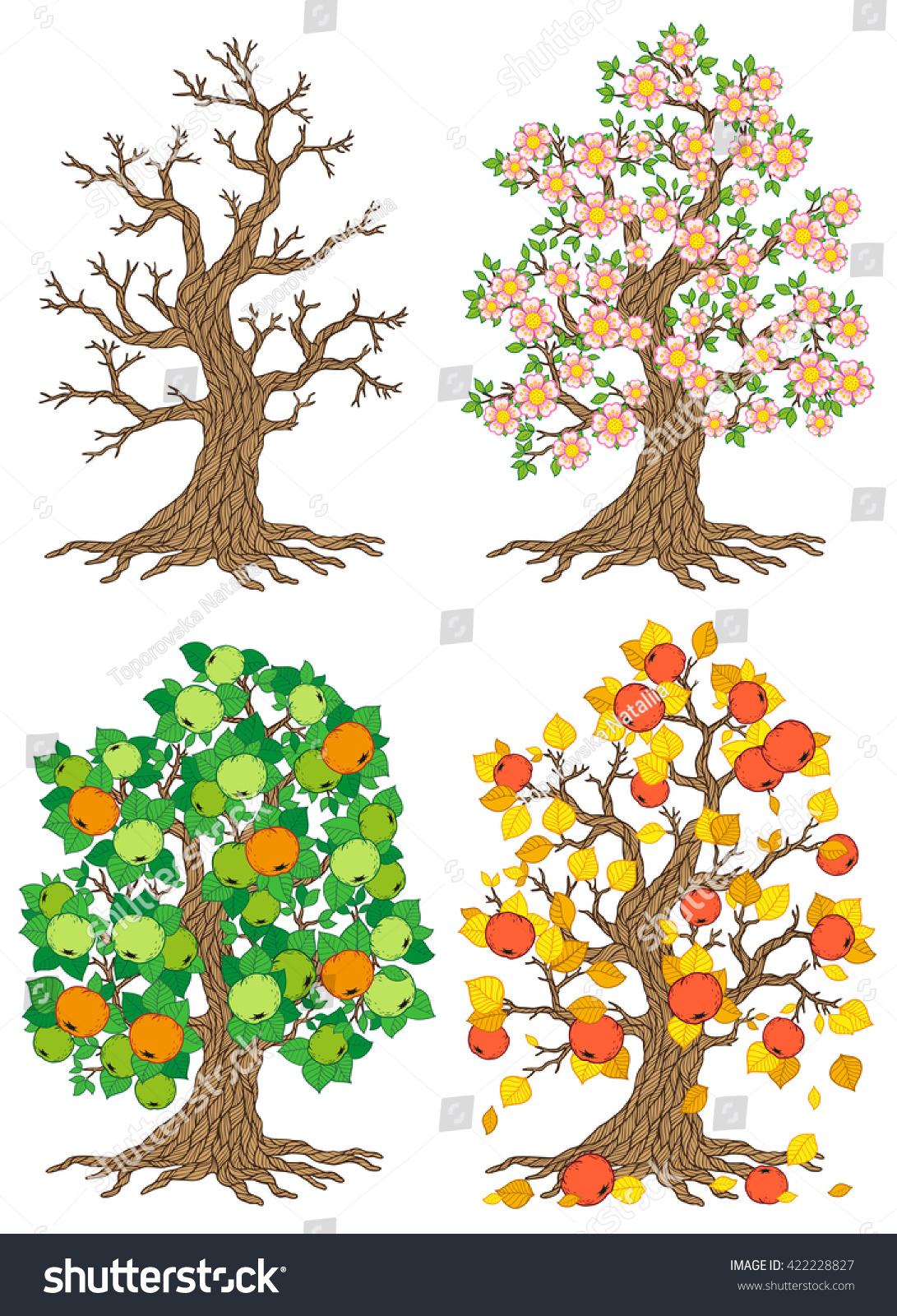 Set Trees Different Seasons Apple Tree Stock Illustration