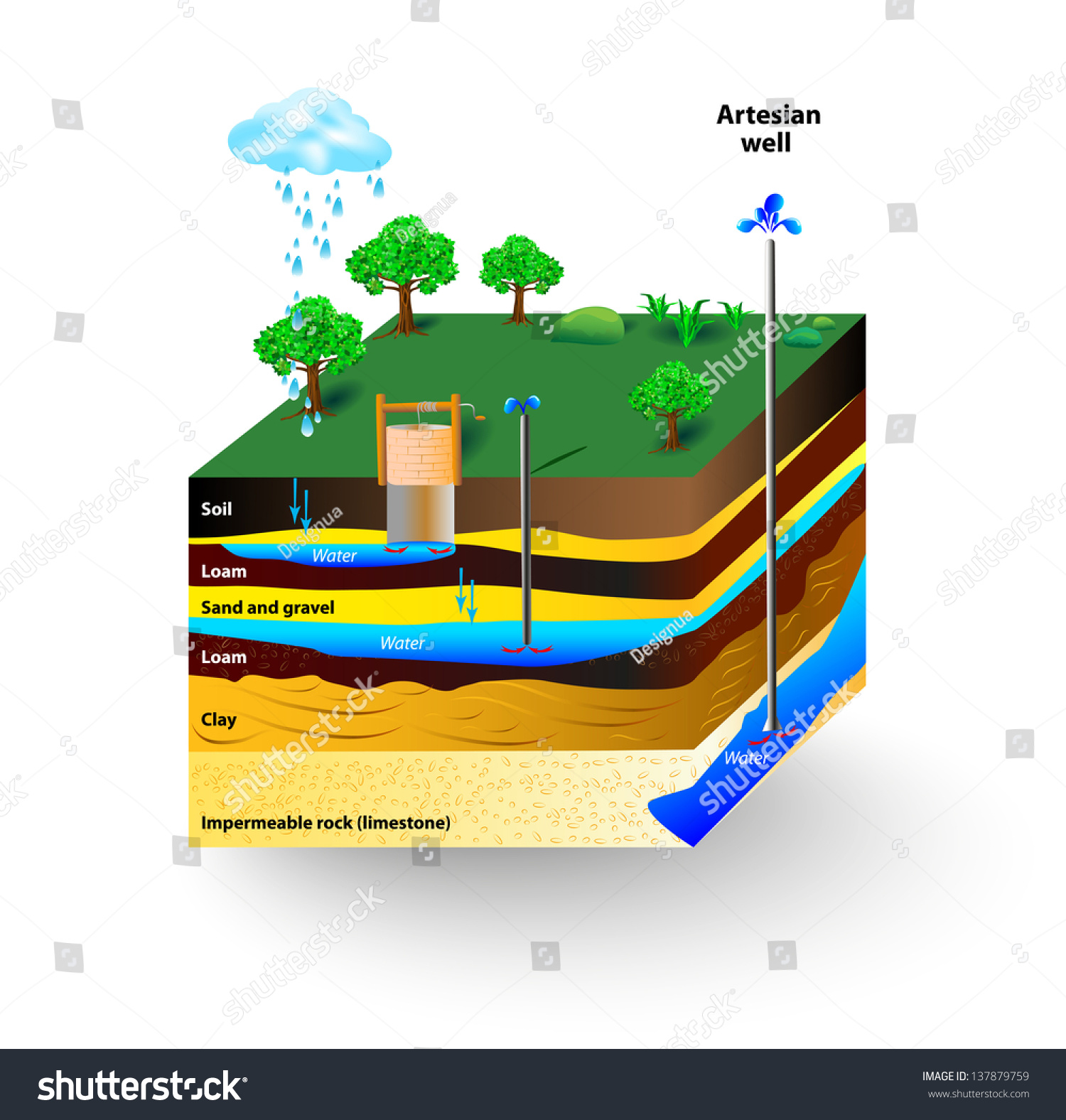Artesian Water And Groundwater Schematic Of An Artesian