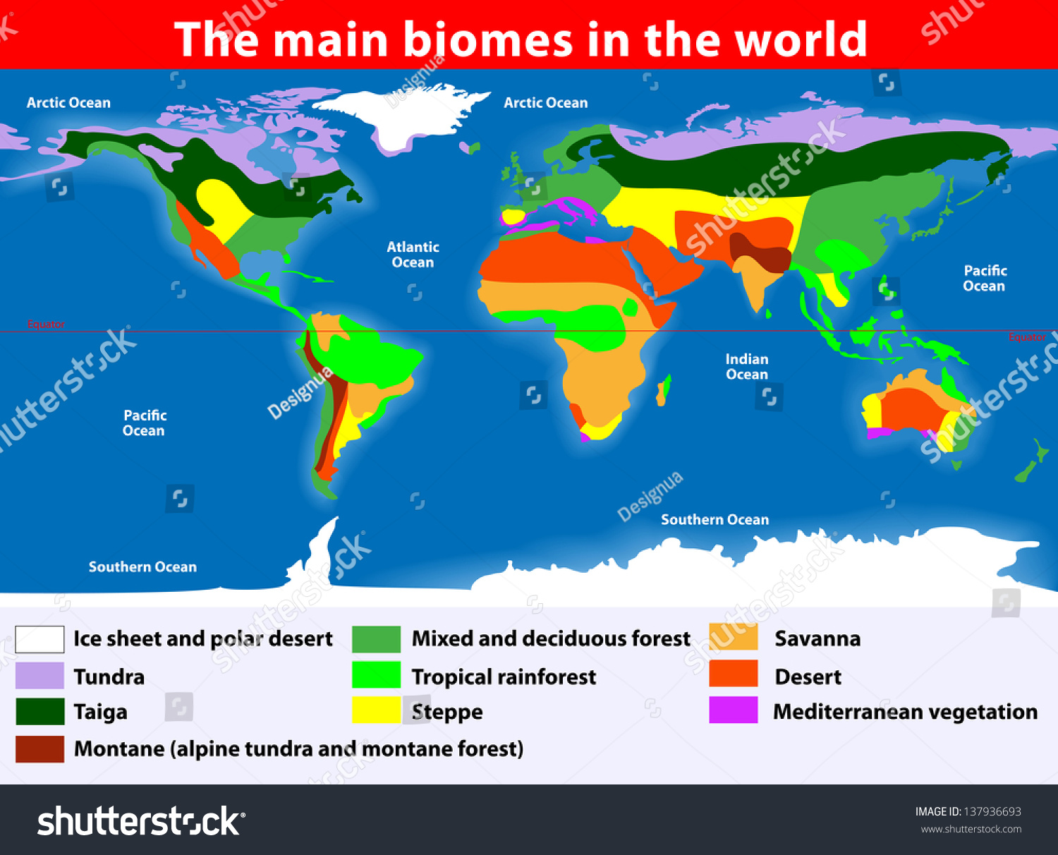 Biotope Earths Terrestrial Biomes Map Stock Illustration