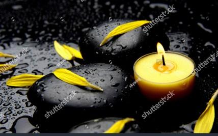 Burning Flower Petals | Gardening: Flower and Vegetables