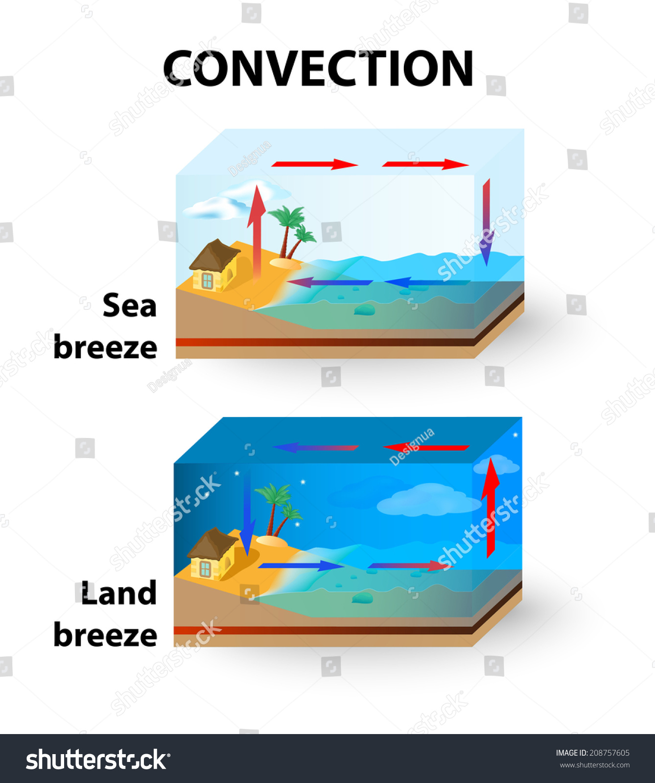 Convection Land Breeze Sea Breeze Stock Illustration