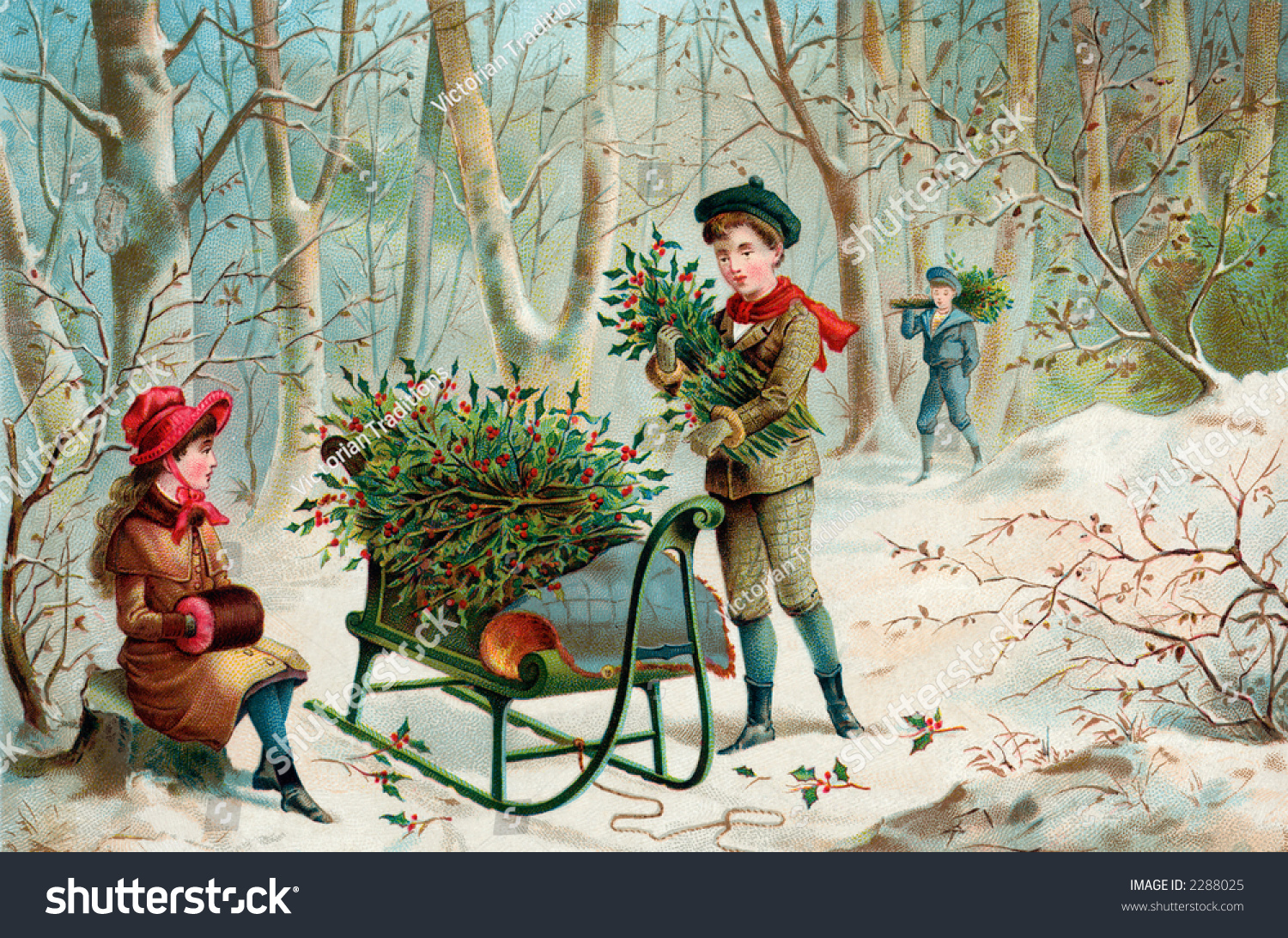 Gathering Christmas Holly An Early 1900S Vintage
