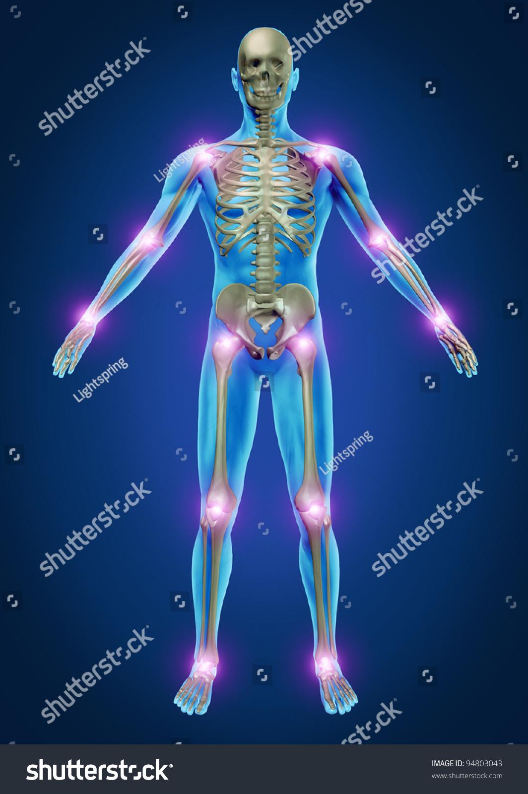 Human Painful Joints Skeleton Anatomy Body Stock