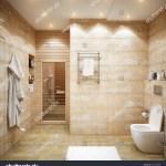 Modern Urban Contemporary Bathroom Interior Design Stock Illustration 662738098