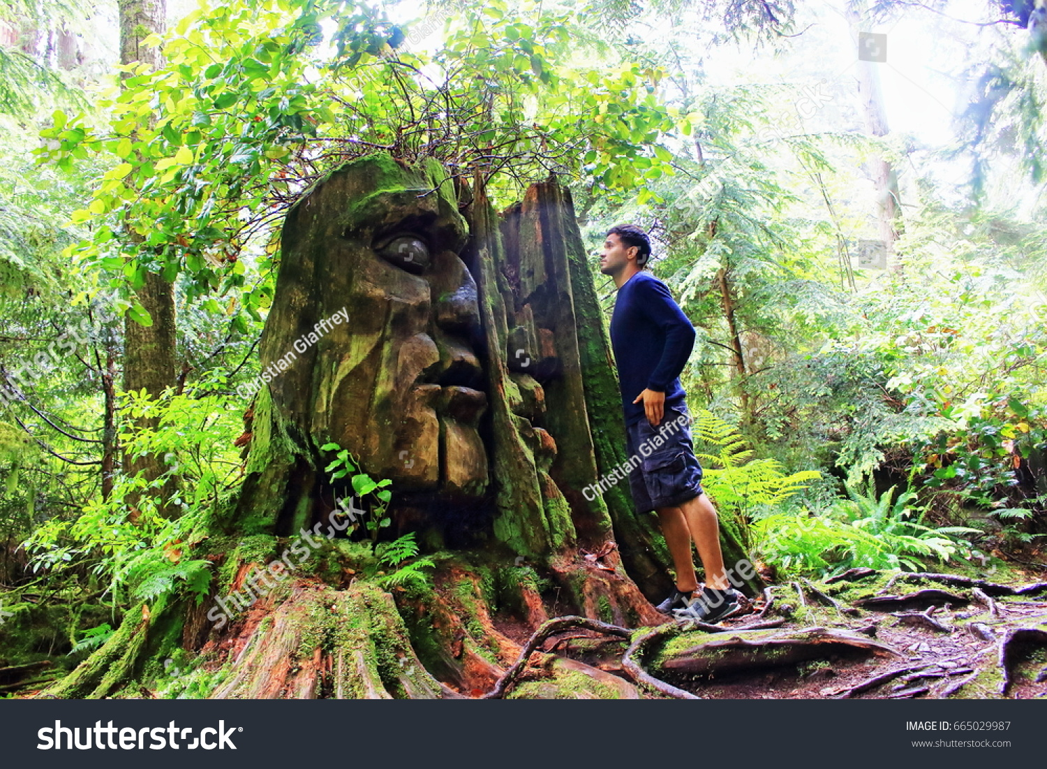 Mutants are the primary enemies of the forest. Natural Ancient Discovery Forest Man Looks Stock Photo Edit Now 665029987