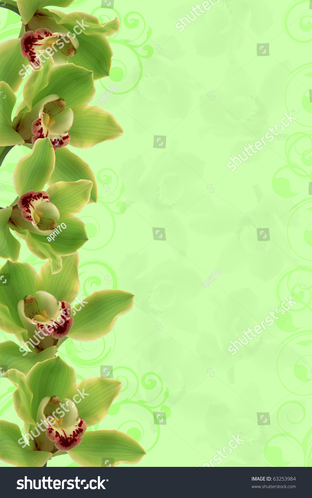Orchids Border For Background Floral Border Wedding Invitation Or Template With Copy Space