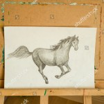 Pencil Drawing Arabian Horse Head Only Stock Photo Edit Now 1061368595