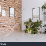Plants Under Painting On White Wall Stock Photo Edit Now 768733105