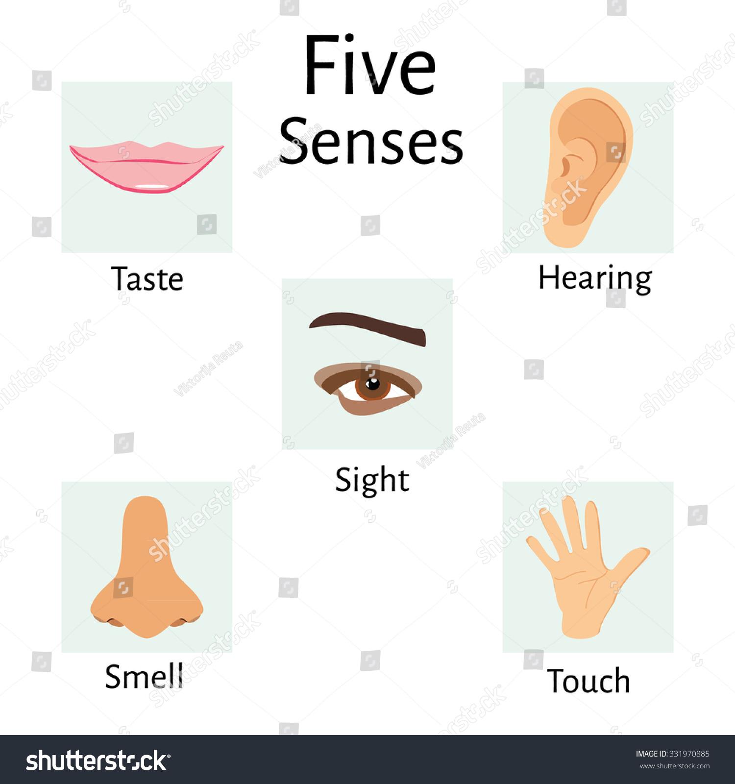 Raster Illustration Five Senses Icons Human Stock Illustration