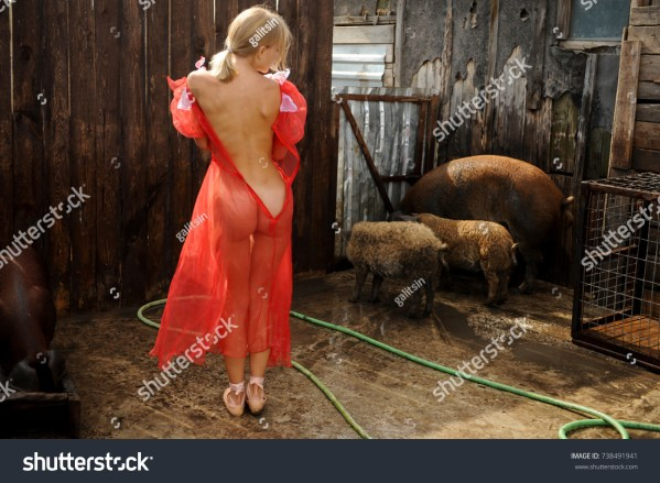 Swine Farm news photos Jenny Galitsin Shutterstock