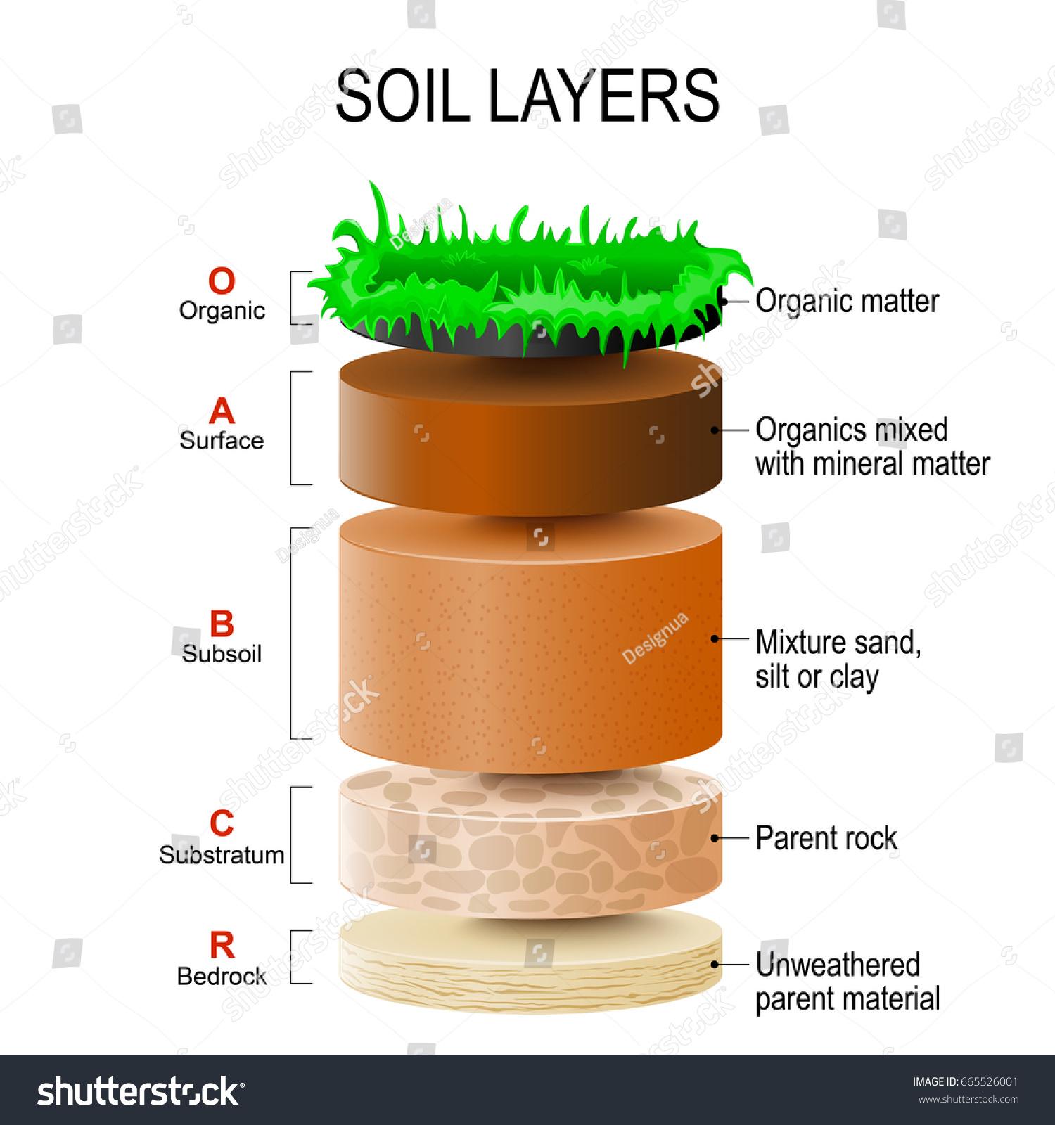 Soil Layers Soil Formation Soil Horizons Stock