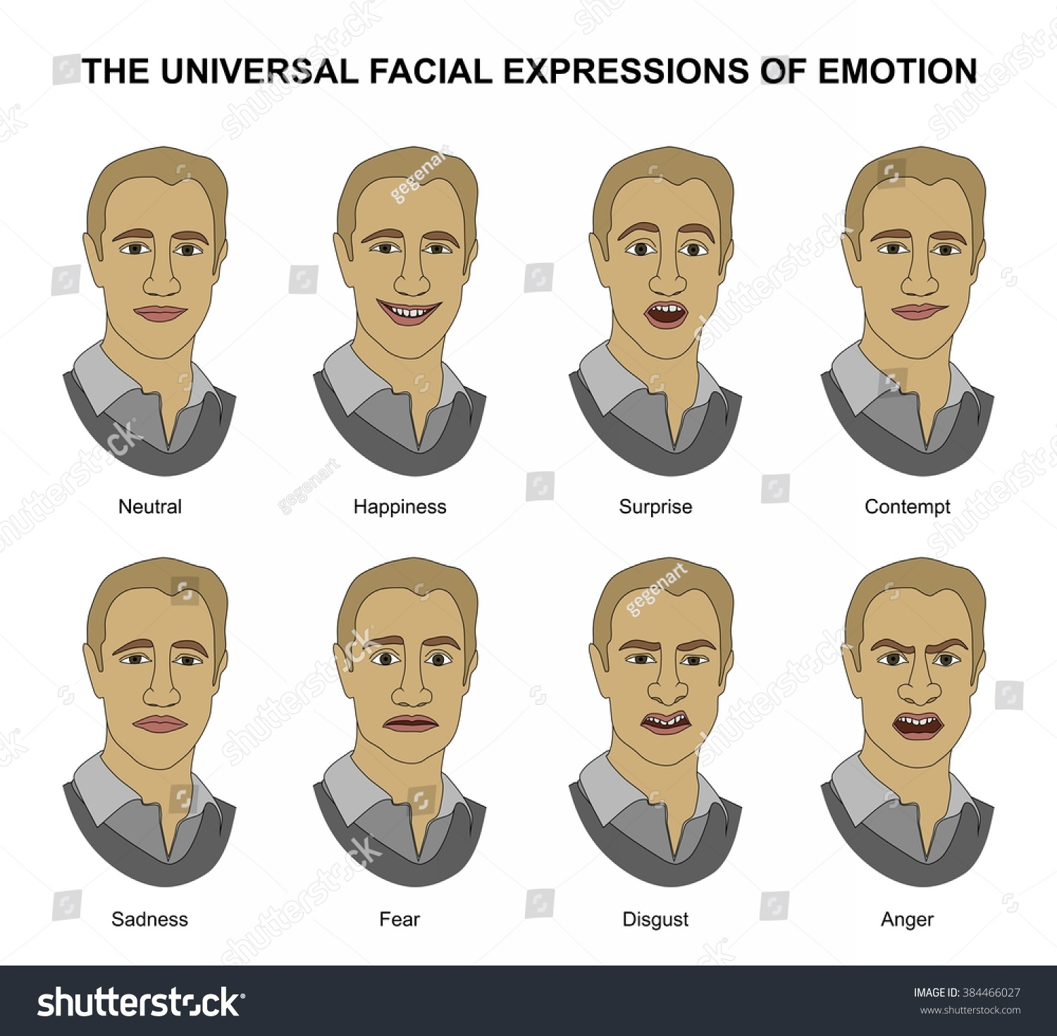 Universal Facial Expressions Emotion Nonverbal Communication Stock Illustration