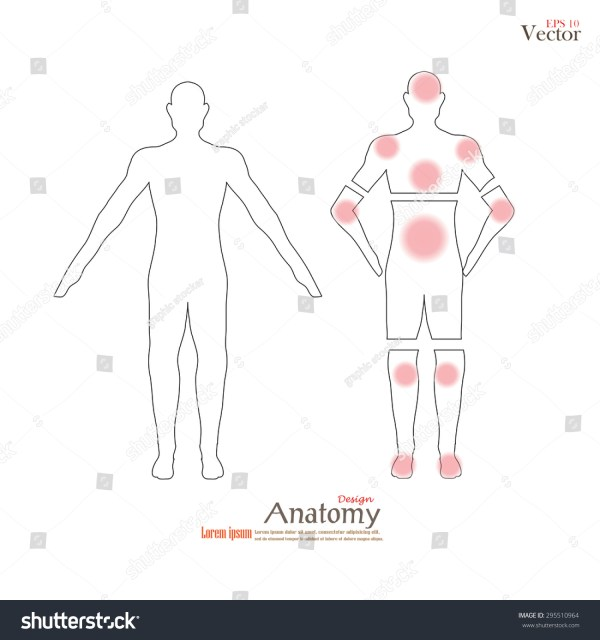 Anatomy Human Body Showing Pain Trigger Stock Vector ...