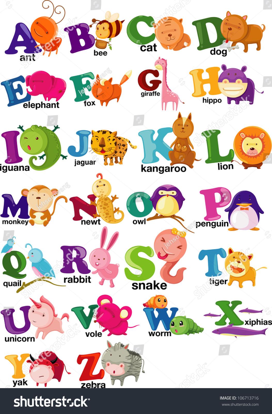 Animal Alphabet Letter Az Stock Vector
