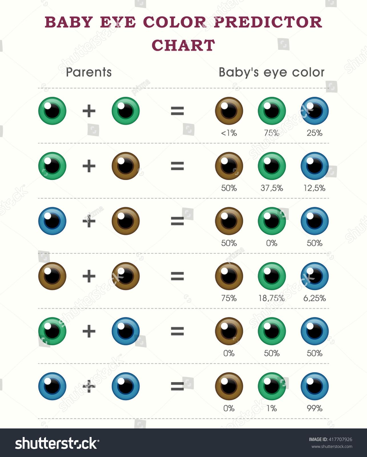 Baby Eye Color Predictor Chart Template Stock Vector