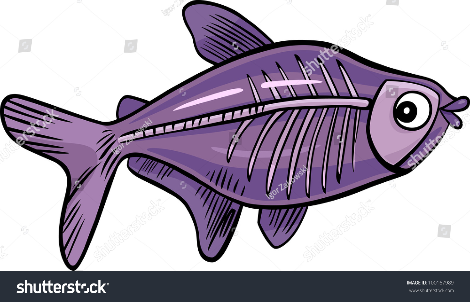 Cartoon Illustration Xray Fish Stock Vector
