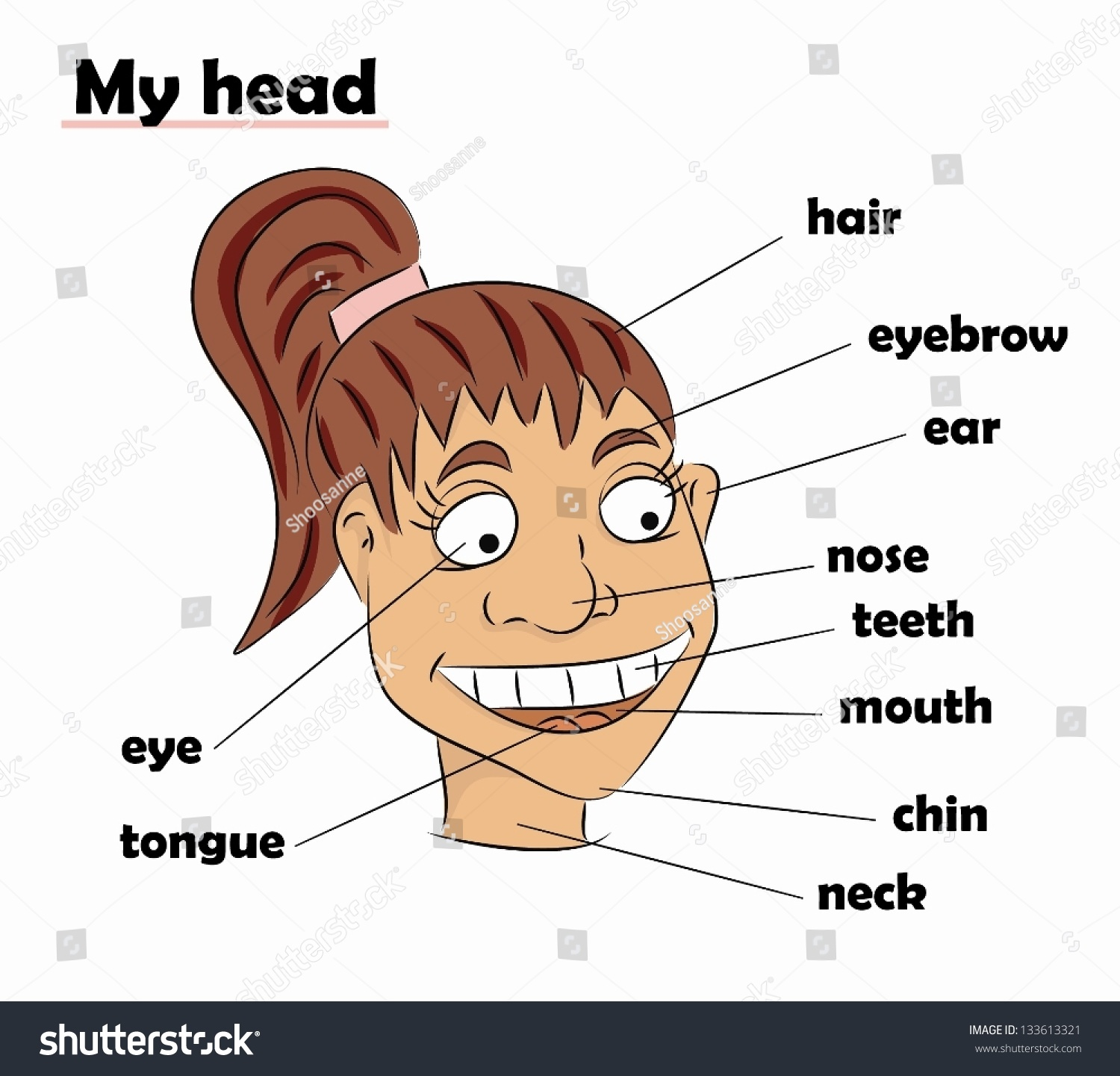 Cartoon Parts Head Vector Stock Vector