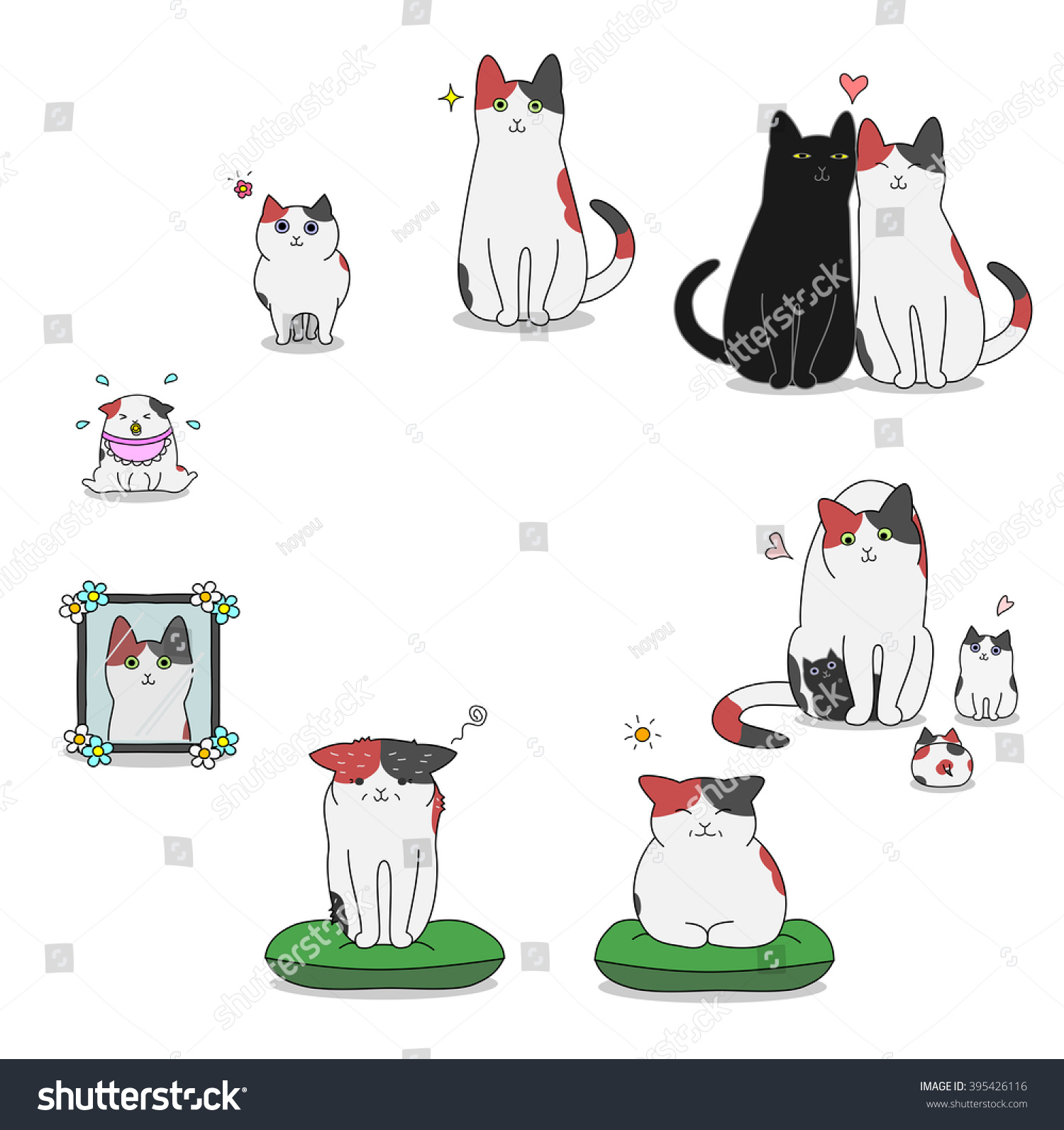 Cats Life Cycle Stock Vector