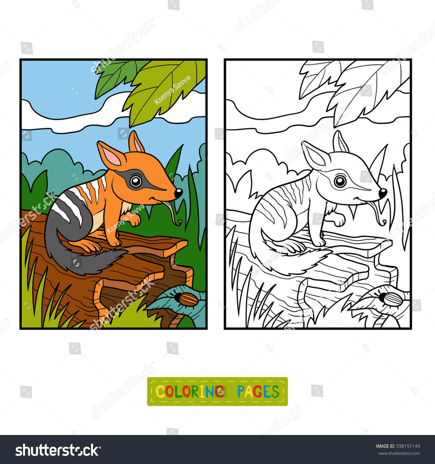 Coloring Book Children Numbat Background Stock Vector