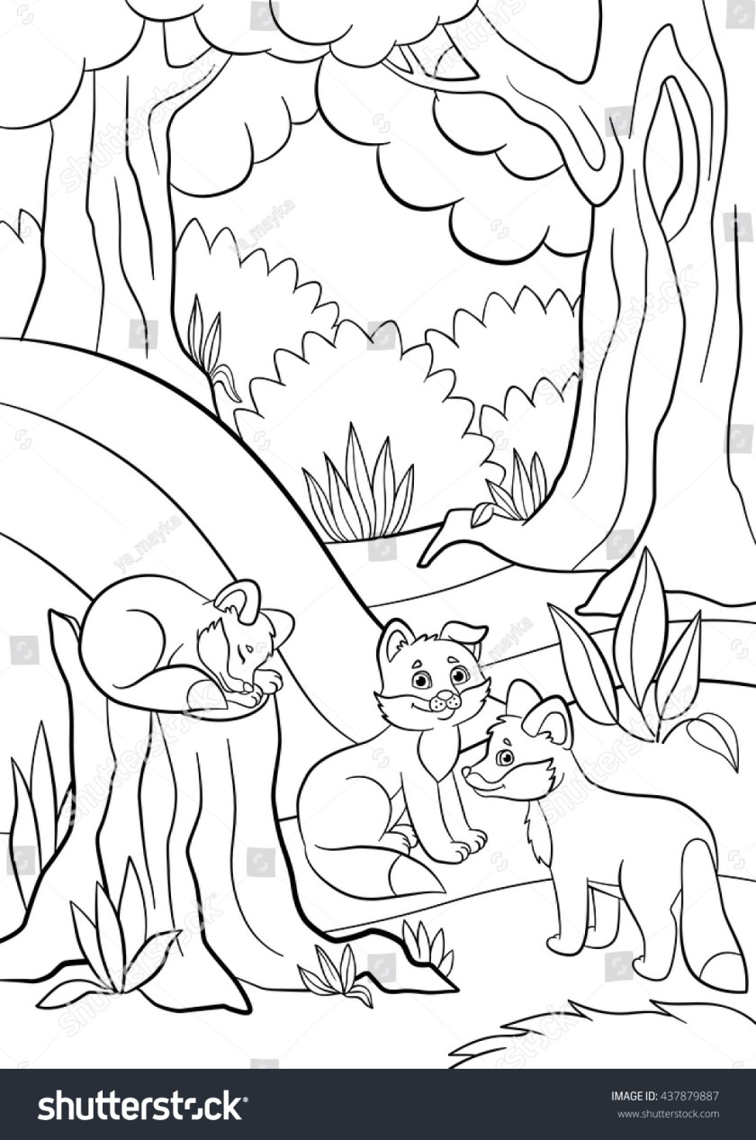 coloring pages wild animals three little stock vector